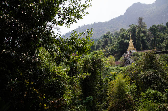 a golden stupa in a forest in chiang dao mountains, thailand