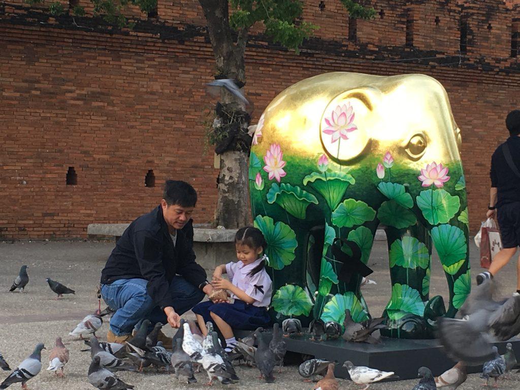 Kolorowy słoń, Chiang Mai Design Week