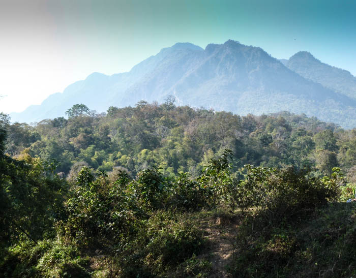 The surrounding mountains at the Shambala in Your Hear Festival