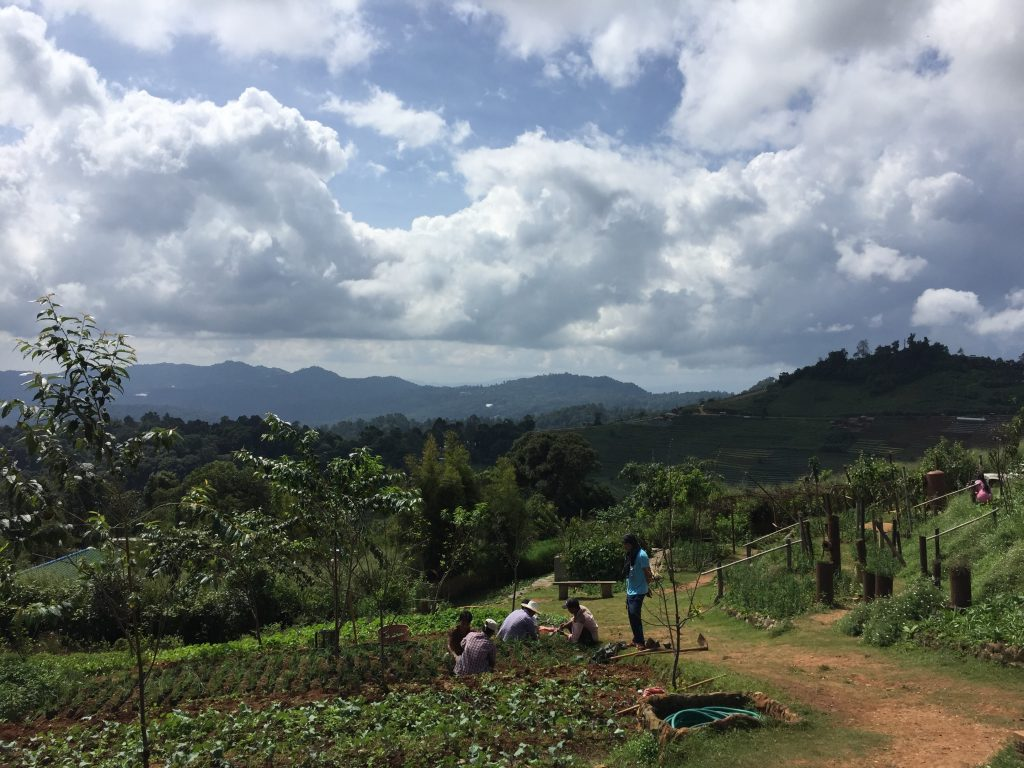 Northern Thailand is full of agricultural Royal Projects