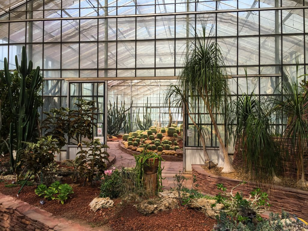 Greenhouse with cacti at Queen Sirikit Botanic Garden in Chiang Mai