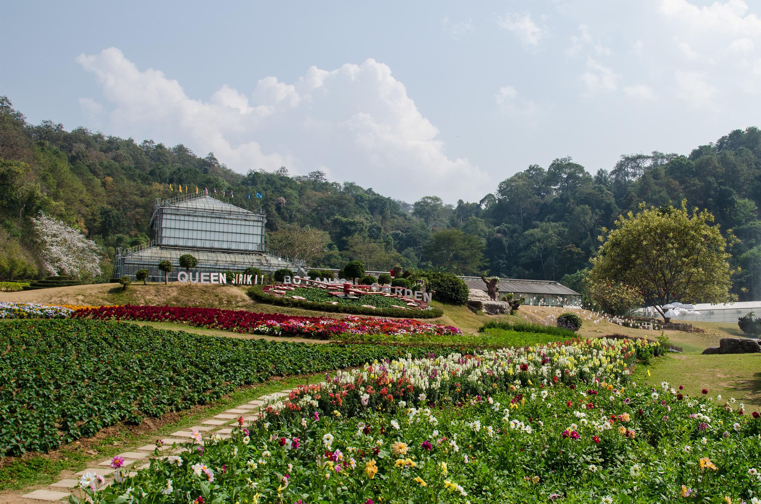Queen Sirikit Botanic Garden Beautiful Flowers And Thailand S Longest Canopy Walkway The Blond Travels