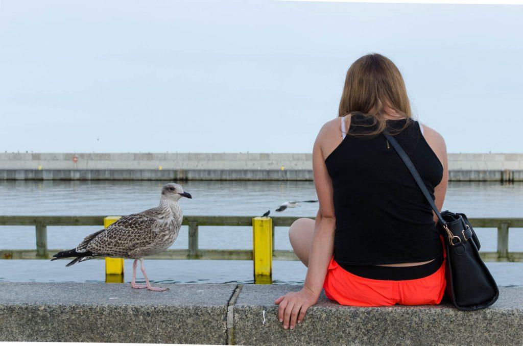 gdynia-kosciuszko-square-seagull-girl