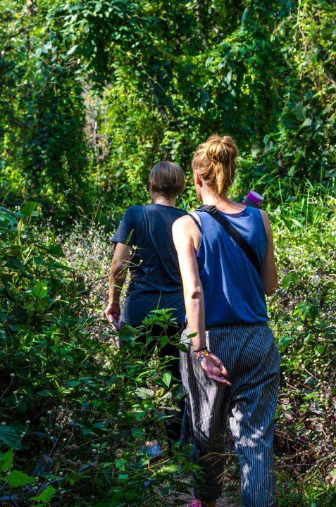 Drzewa trekking do Wat Pha Lat
