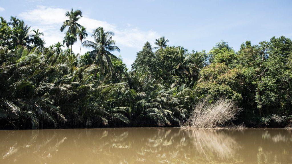 las naokolo kanalu w trat w tajlandii