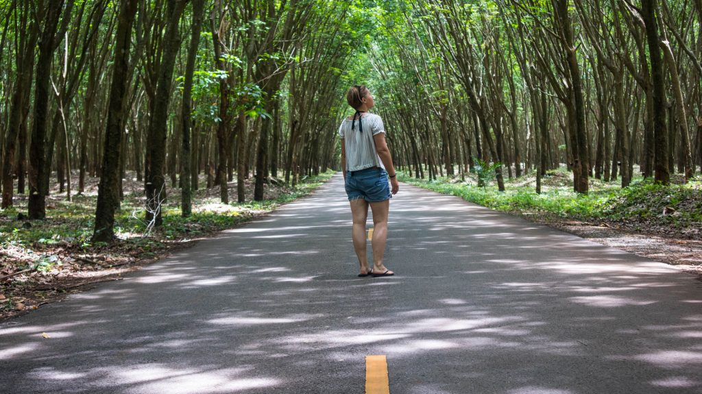 rubber tree tunnels in khanom