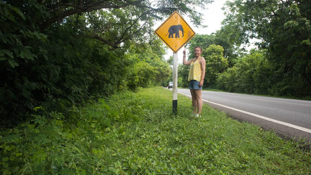 watch out for the elephants sign in kanchanaburi