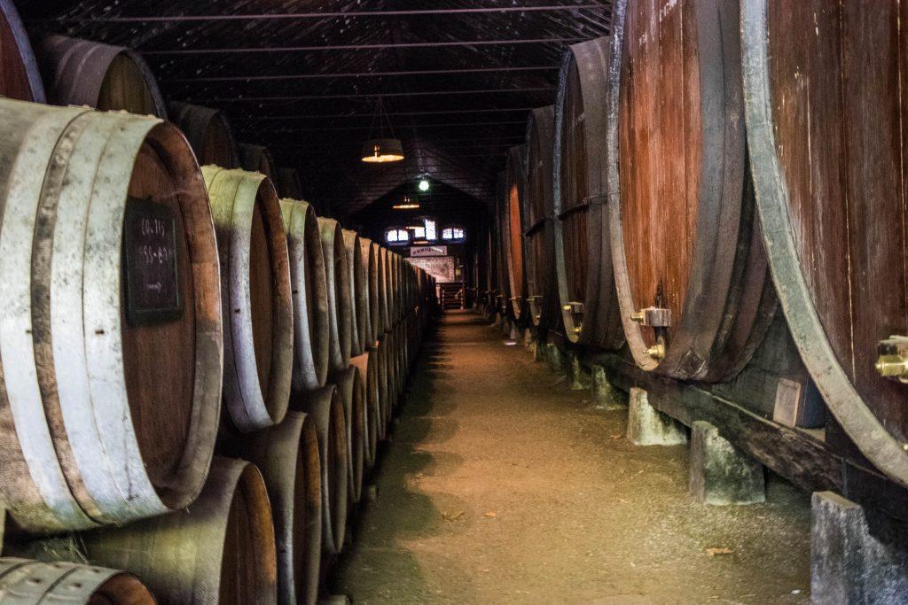 Wielkie drewniane beczki stoją w zakurzonym magazynie José Maria de Fonseca w Azeitao.
