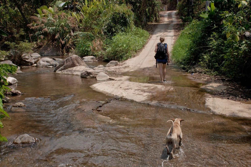 a girl is walking through a stream with a dog following her