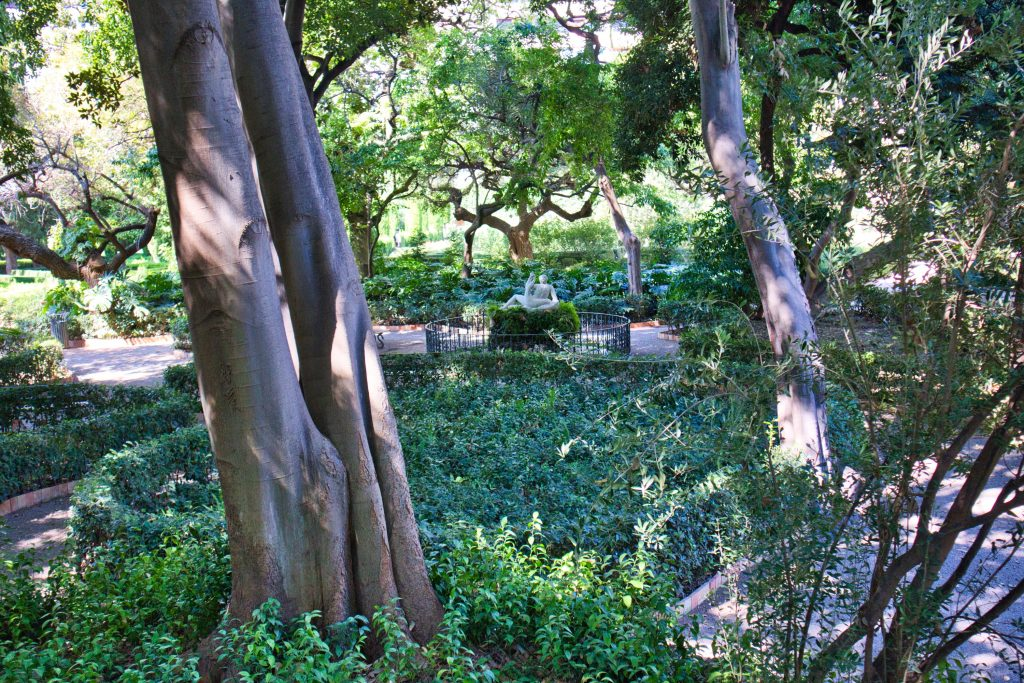 a fountain hidden among lush green trees in a small park in valencia