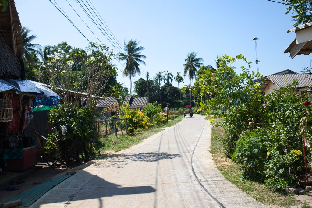 an empty road surrounded by palm trees on koh klang, krabi, thailand