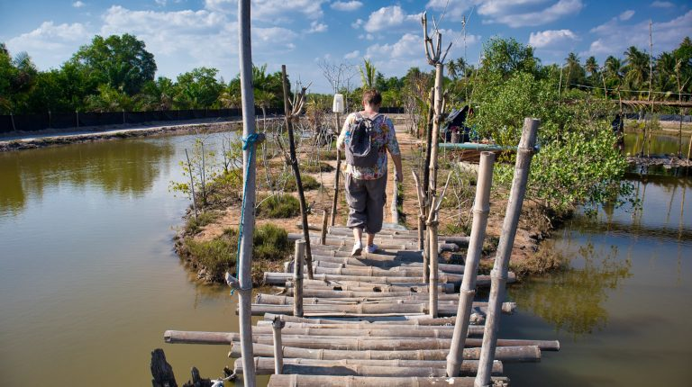 a woman walks on a wooden bridge in koh klang, krabi, thailand