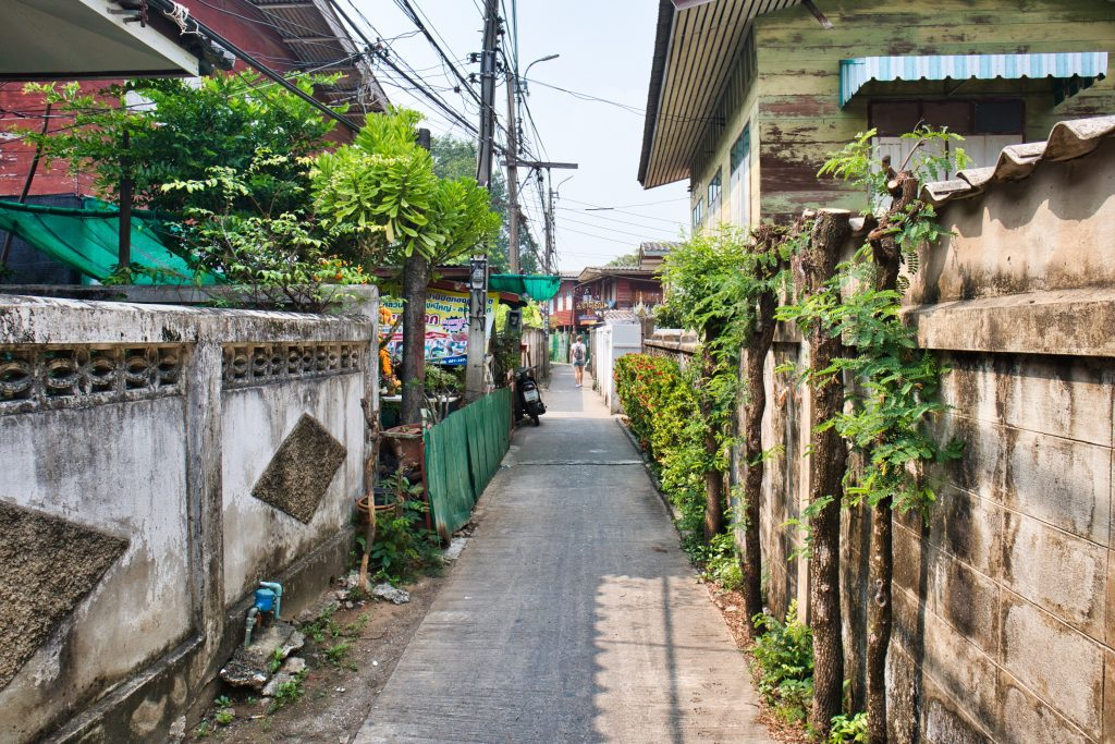 a street on koh kret in bangkok. Small houses with rubbles and green vines and trees.