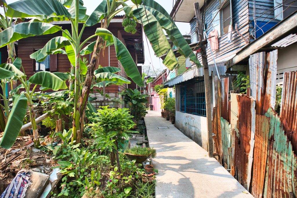 a narrow lane on koh kret island with green banana trees and small houses.