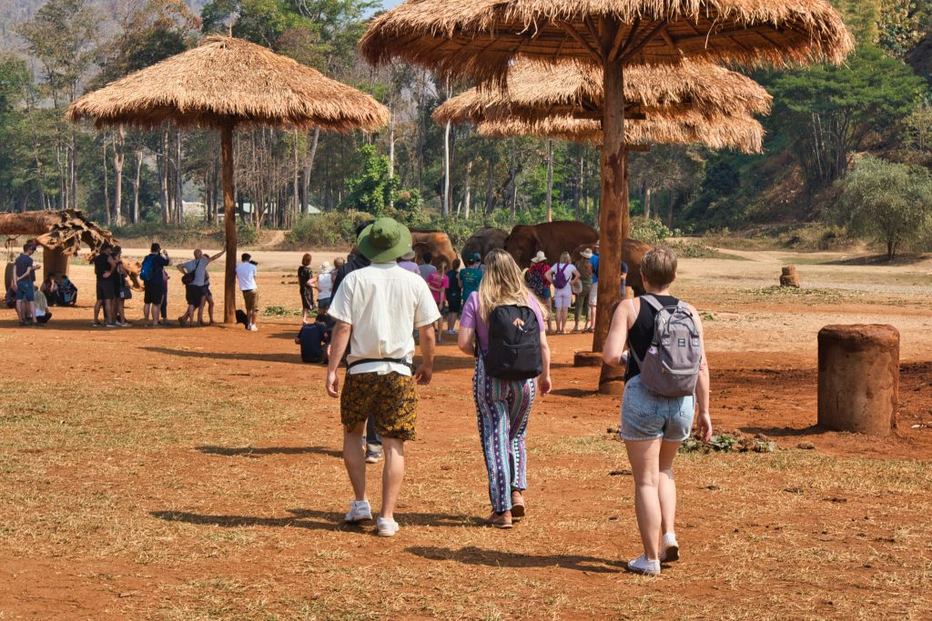 a group of tourists walking at elephant nature park
