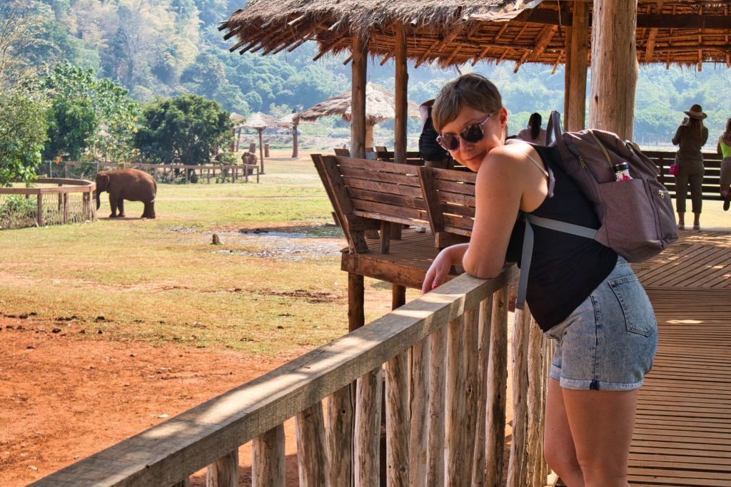 a woman watching elephants from afar at elephant nature park
