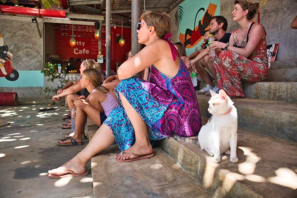 a woman in a purple dress sitting on stairs next to a white cat at animal shelter in koh lanta.