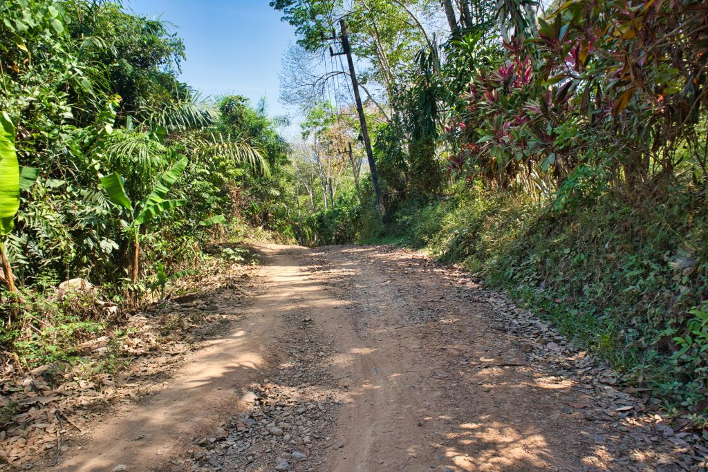 A dirt road with forest around on koh yao noi.