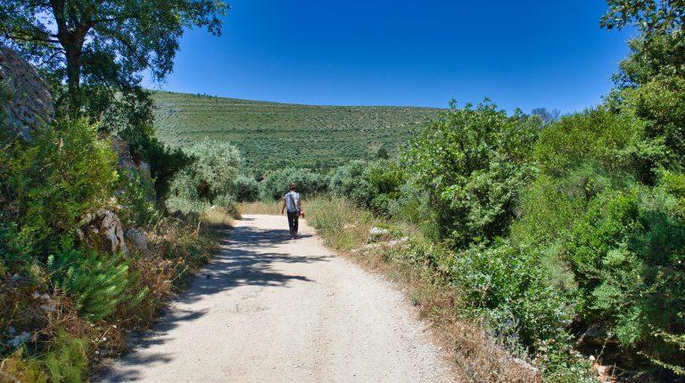 kobieta idzie drogą w parku narodowym w portugalii