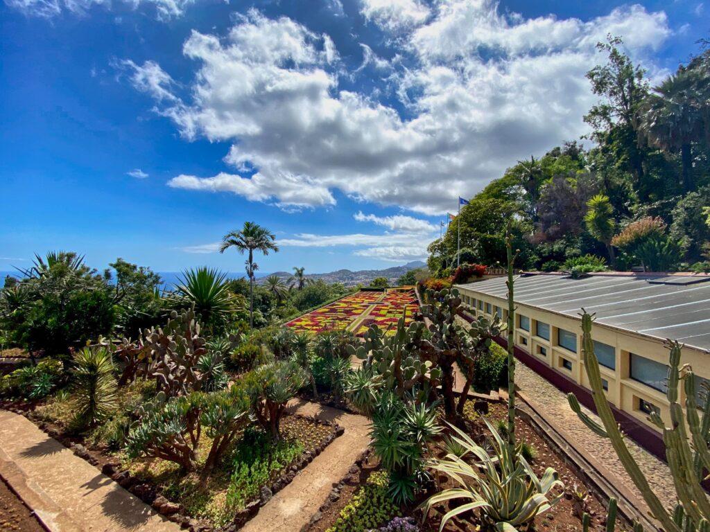 Ogórd botaniczny na Maderze widziany z góry.