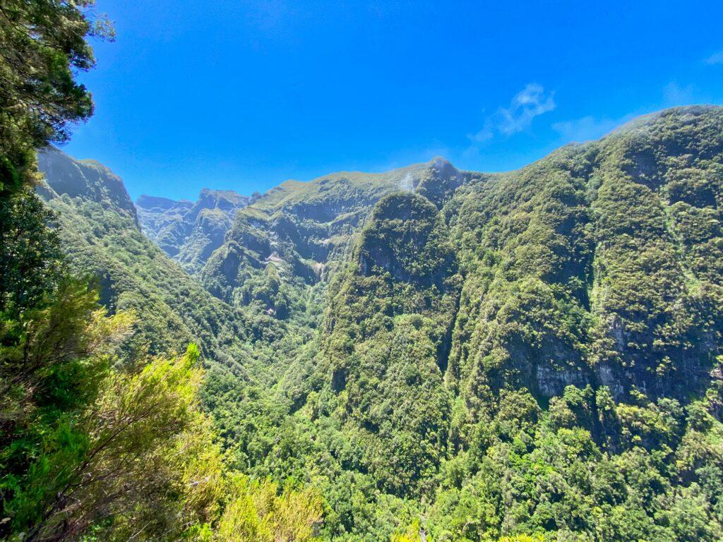 góry madera zielono